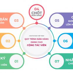 Quy trình 7 bước bán hàng dành cho CTV tại Chatuchak.Vn