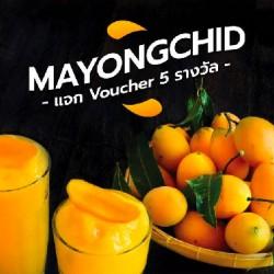 Mayongchid (Plango) - Món Xoài Lai Mận Nổi Tiếng Ở Thái Lan