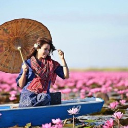 Ngắm Hồ Hoa Súng Tuyệt Đẹp Talay Bua Deang Ở Udon Thani