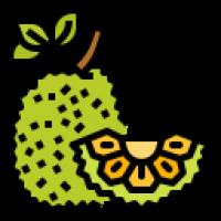 Trái Cây Sấy Khô Thái Lan