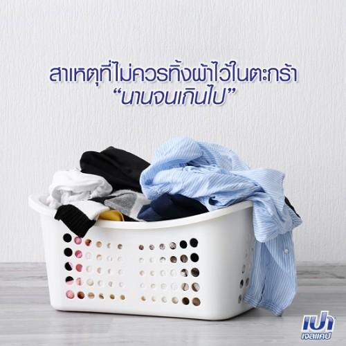 Bột Giặt Dành Cho Máy Giặt Pao M.Wash 3000g Thái Lan [Xanh Đậm]