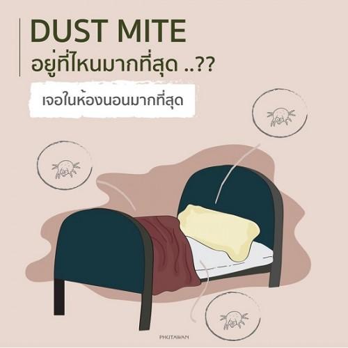Xịt Vệ Sinh Mền Gối Ga Giường Phutawan Dust Mite Spray 100ml Thái Lan