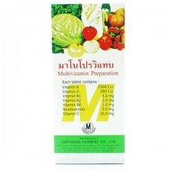 Thuốc bổ sung các Vitamin rau củ quả Multivitamin Prepartion